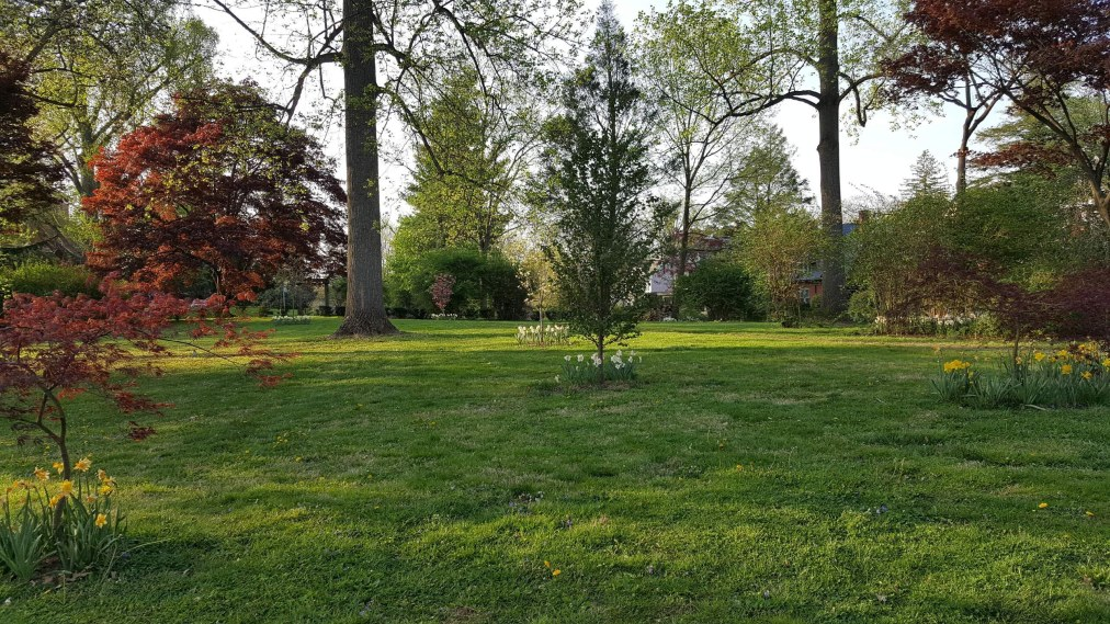 Barclay Grounds: The PicnicPark