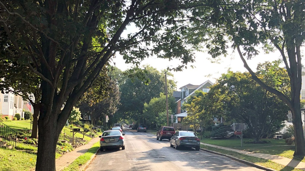 West Chester's New TreeOrdinance