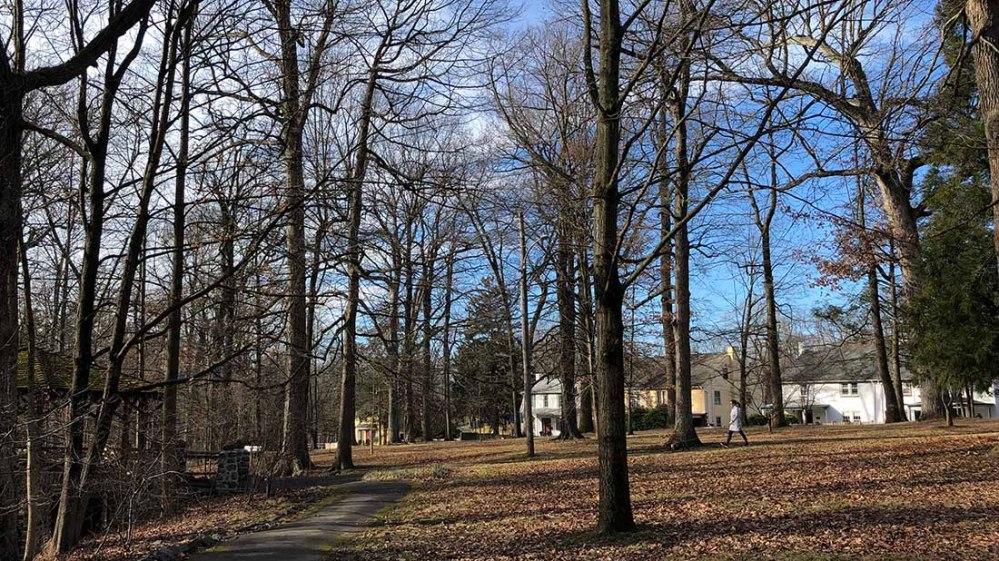 everhart park_winter2020