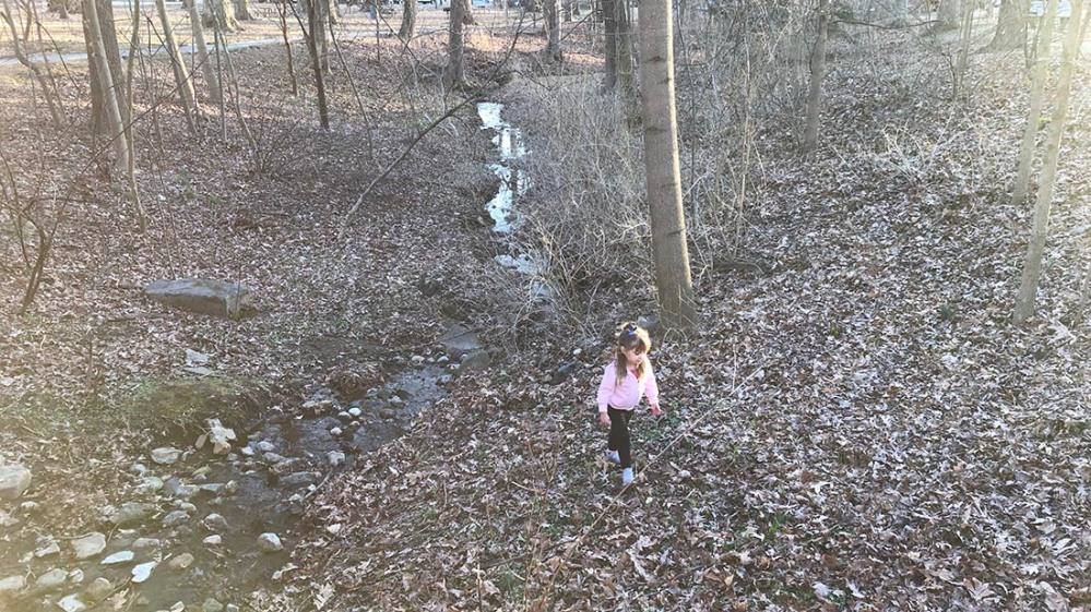 everhart park_winter2020-3
