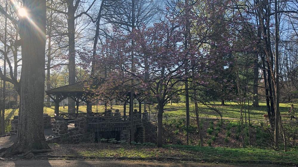 everhart park_spring
