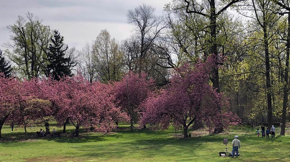 everhart park spring